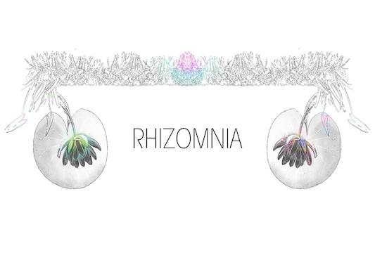 16th project: 'Rhizomnia' Kunstfilmdreh