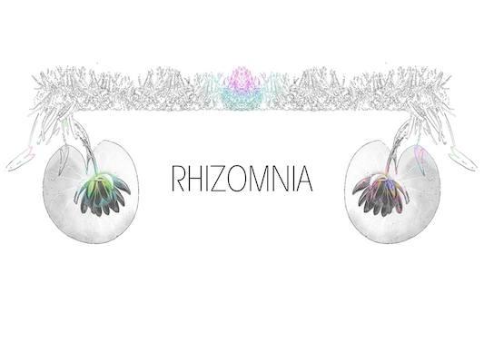 16th project: 'Rhizomnia' Kunstfilmdreh